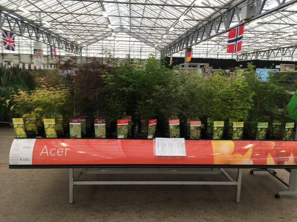 Acer display in the exhibitions halls