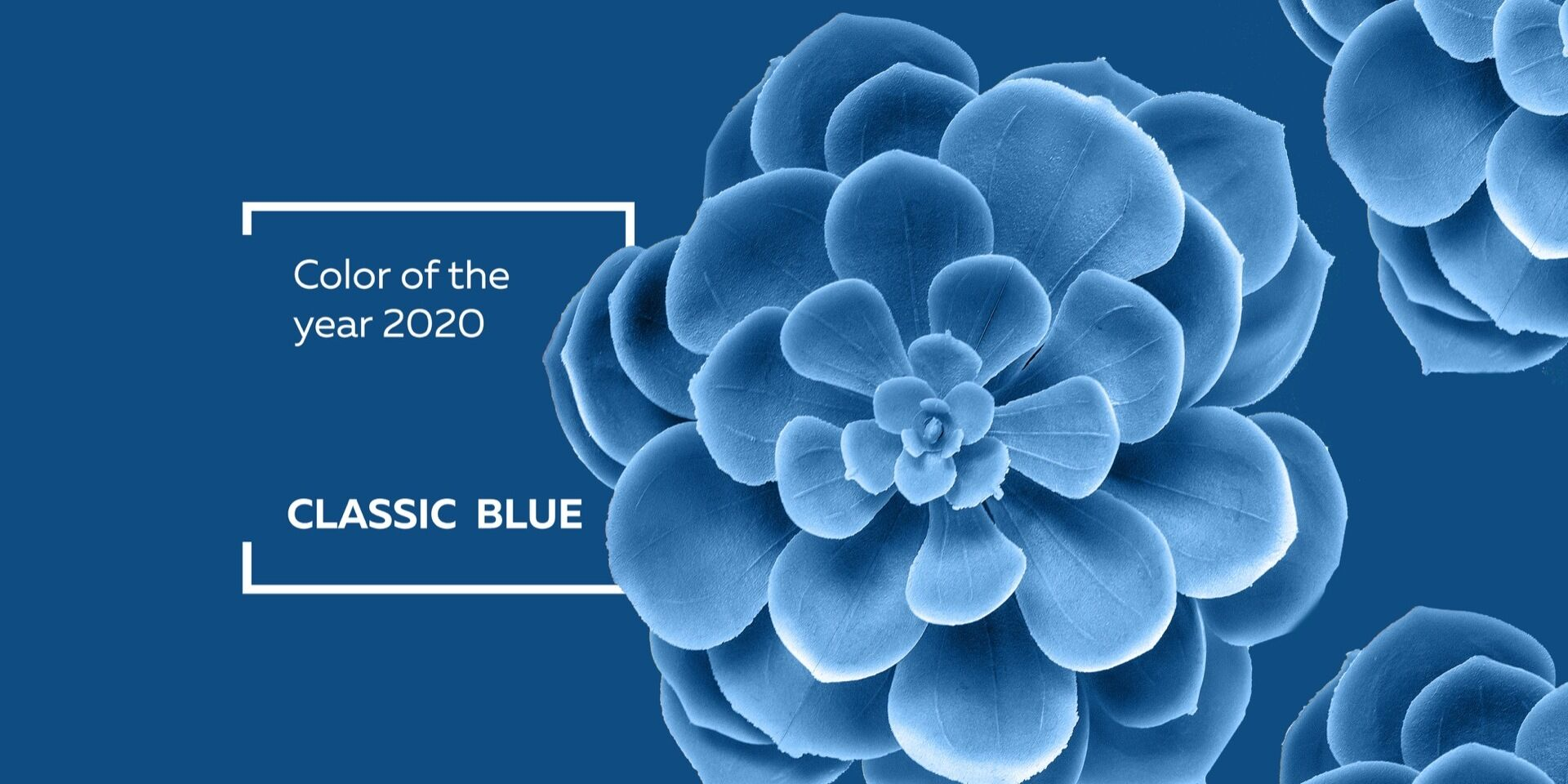 The color of the year 2020 – «CLASSIC BLUE»